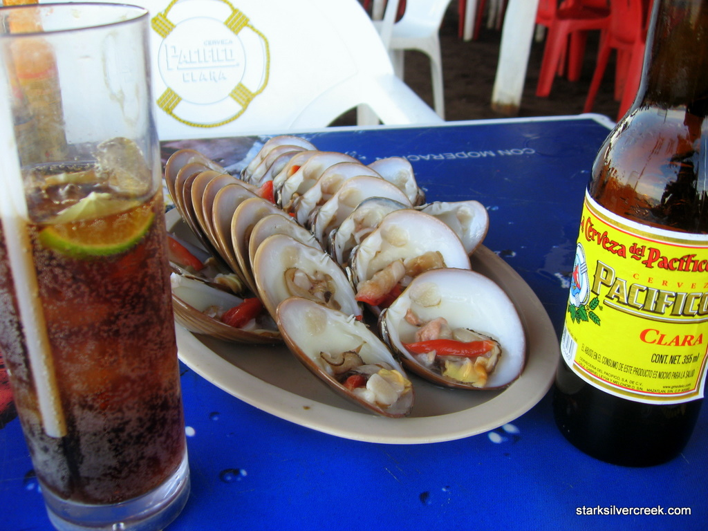 vista-al-mar-clam-shack-loreto-baja-1