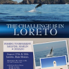Fishing Tournament in Loreto: Sailfish, Marlin & Dorato