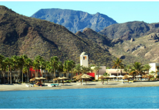 Discover Loreto Directory Updates: Baja Woodworking, Big & Chunky Bakery, Loreto Baja Golf Resort & Spa